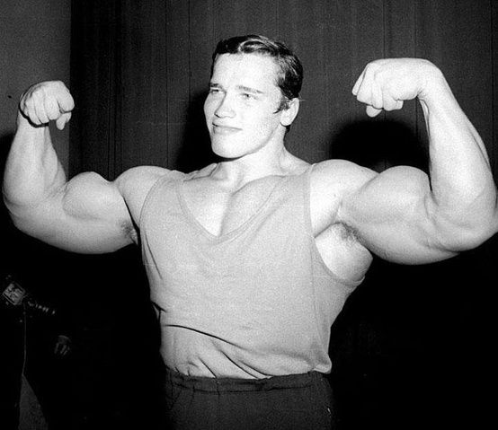 arnold arms
