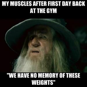 muscle memory meme gandalf
