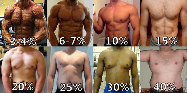 body fat % chart